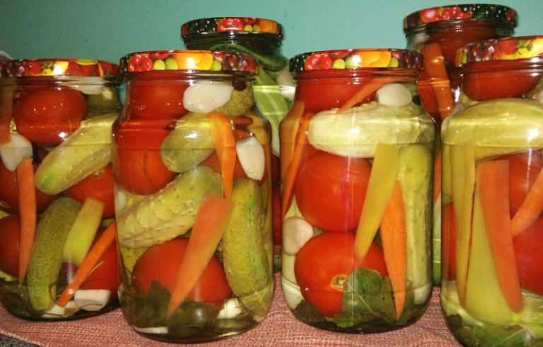 Салат овощное ассорти на зиму рецепты с