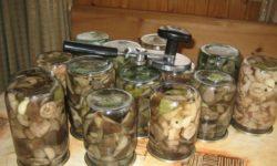 Рецепт консервирования грибов на зиму
